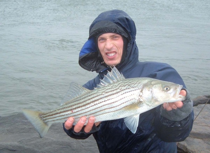 Said, fly fish striped bass